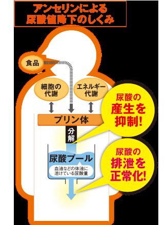 食べ物 下げる 一覧 を 値 尿酸